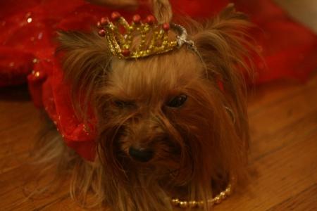 look at me...I'm a princess!